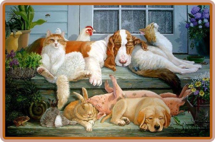 Прикольные кошки и собаки рисунки
