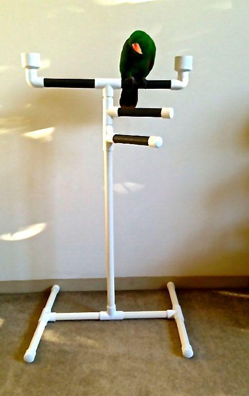 Best 25 bird stand ideas on pinterest bird play gym for Gimnasio casero
