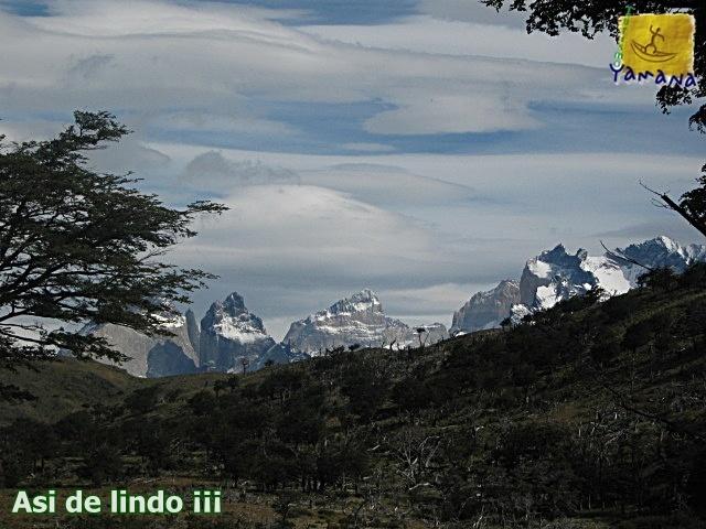 Hermosa y tranquila Caminata observando la naturaleza en Torres del Paine.