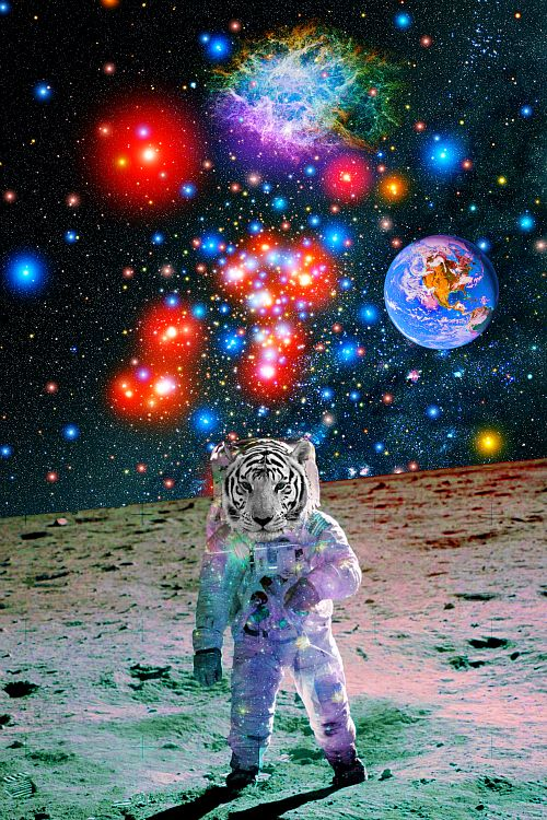 astronaut trippy weed wallpaper - photo #38