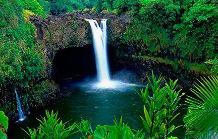 Kauai Nature Tours -  Paddling Wailua River & Waterfall Hike http://www.hawaiiactive.com/activities/kauai-waterfall.html