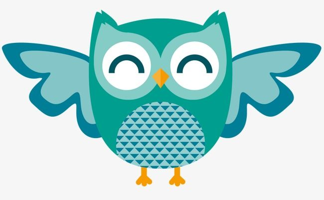 Cute Owl Owl Vector Cartoons Png Owl Png
