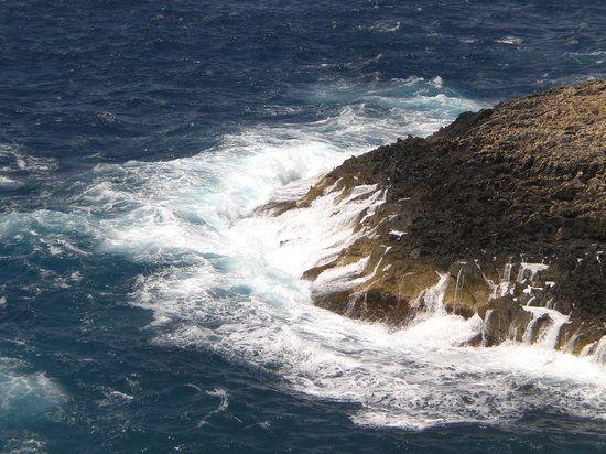 Prenota le migliori cose da vedere in Malta, Europa su TripAdvisor: 133.535 recensioni e foto di 312 su TripAdvisor con consigli su cose da fare in Malta.