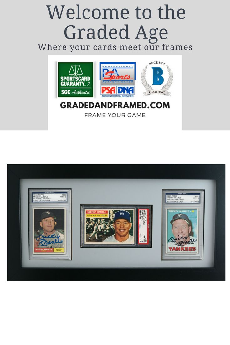 9 best psa graded sports card frames images on Pinterest