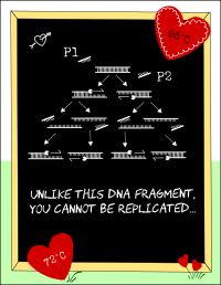 Nerdy Valentineu0027s Day Cards For Science Geeks! Check Out Nerdywords.ca For  More Biology