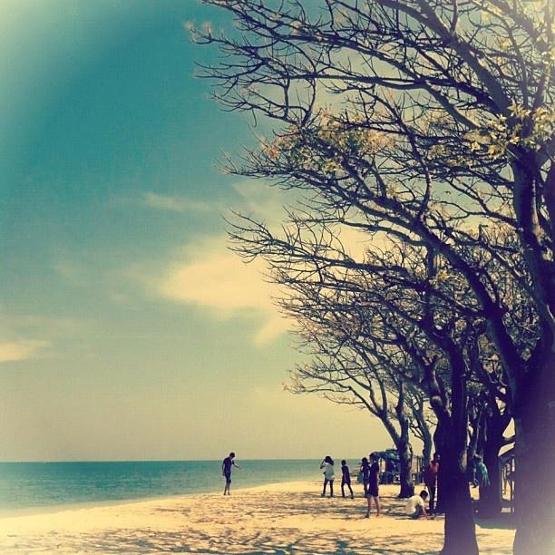 Lae Lae Island, Makassar - Sulawesi, Indonesia