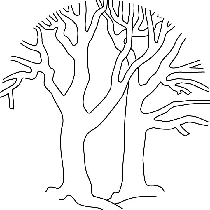 Coloring Pages Bare Trees Bare Trees Printable Version