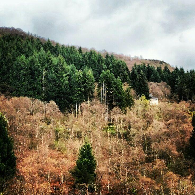 A wanderfull landscape
