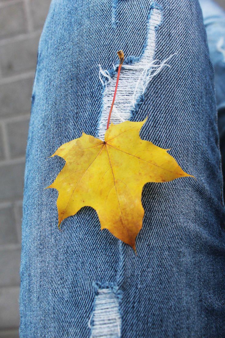 Nice leaf... I love autumn