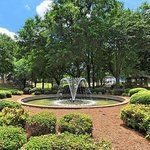 Things to Do in Belmont, North Carolina: See TripAdvisor's 563 traveler reviews and photos of Belmont tourist attractions. Find what to do today, this weekend, or in June. We have reviews of the best places to see in Belmont. Visit top-rated & must-see attractions.