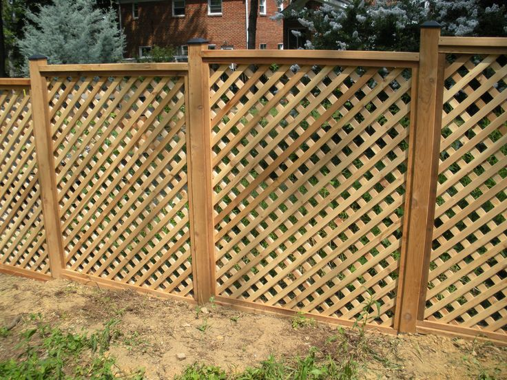 26 best images about fence scaping on pinterest lattice
