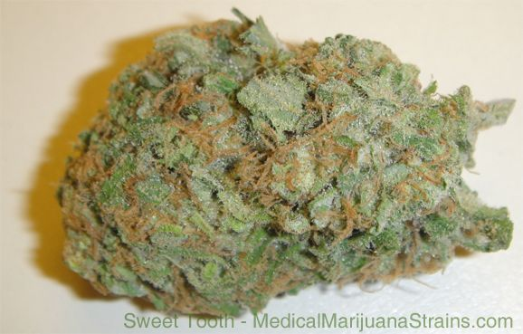 sweet tooth strain - http://potterest.com/sweet-tooth-strain-2