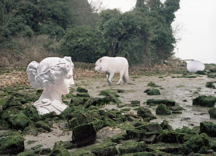 Rachele Maistrello, 1986 The island, 2016 C-print da negativo 4,5x6 cm, 50 x 70 cm.  ed. di 3  Galleria civica di Modena, nuova acquisizione
