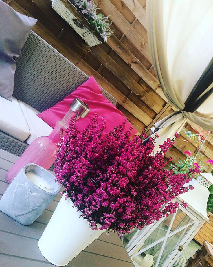 """Polubienia: 15, komentarze: 2 – AG💖WA (@ag_wa) na Instagramie: """"😍😍😍#garden #wrzosy #wrzosowelove #lovemyhome#goodvibes #goodlooking #interiordecor"""""""