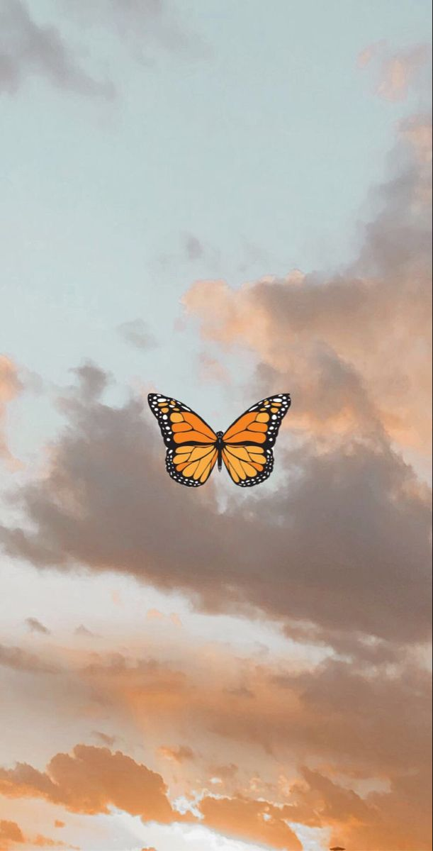 sky and butterfly butterfly wallpaper iphone iphone