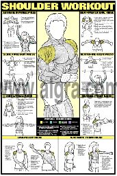 Bruce Algra's Shoulder Workout Poster presents the most effective weight training exercises to develop the deltoid muscles for men and women. Each of eight exercises instruct and illustrate how to strengthen and shape the shoulder muscles in a quick and safe manner. This fitness routine and body building poster is full of great education and will enhance any weight room at home or at the health club.