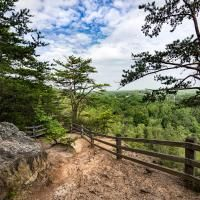 18 best occoneechee mountain state natural area images on pinterest occoneechee mountain state natural area offers a quick escape into nature with its three miles of trail exploring riverside forests bluffs reaching to the fandeluxe Choice Image