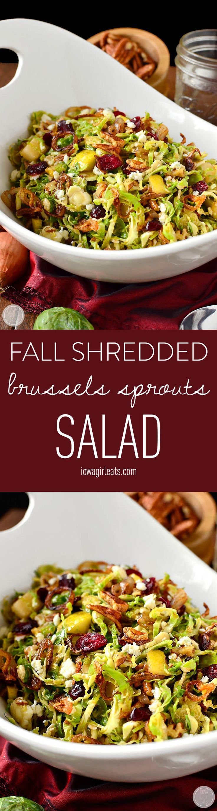 Fall Shredded Brussels Sprouts Salad - Crispy and crunchy, and full of fresh and savory flavors! (Fall Recipes)