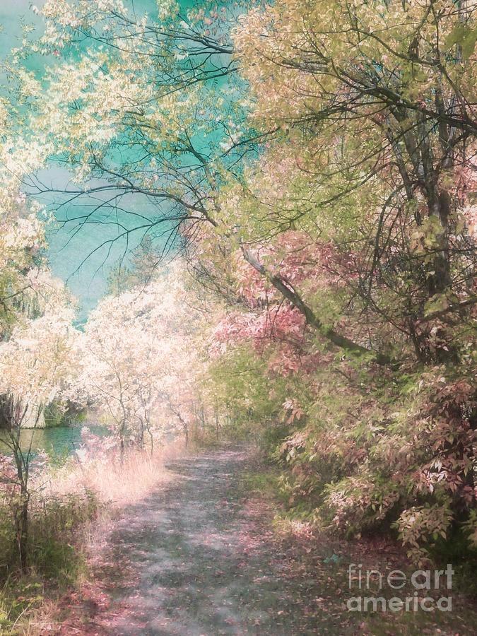 ✯ The Walkway of Forgotten Dreams