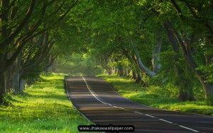 Free Download HD Widescreen Nature Wallpapers  http://jhakaswallpaper.com/nature-desktop-wallpaper-hd-widescreen-free-download/
