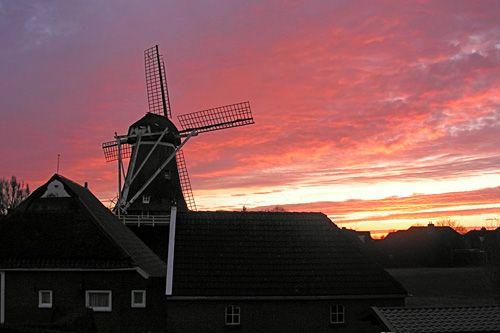 De molen Germania werd in 1825 als grondzeiler gebouwd en werd in 1852 verhoogd tot stellingmolen. De molen was vroeger als koren- en pelmolen ingericht,  In 1973 volgde een volledige restauratie waarna de molen op vrijwillige basis in bedrijf kwam. Bij deze restauratie werd de molen vernoemd naar het klooster Germania dat vroeger in Thesinge stond. Sinds 2012 is de molen eigendom van de stichting Het Groninger Landschap.