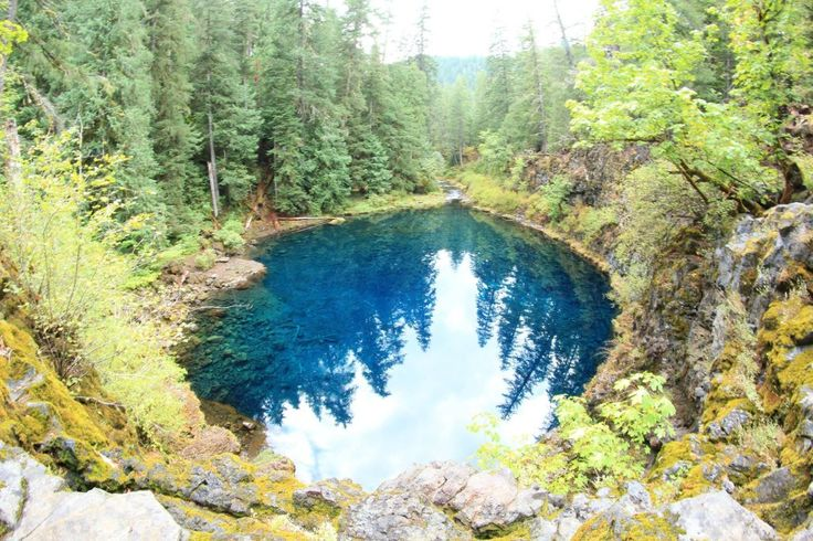 25 Best Ideas About Tamolitch Pool On Pinterest Blue Pool Oregon Blue Pool And Blue River Oregon