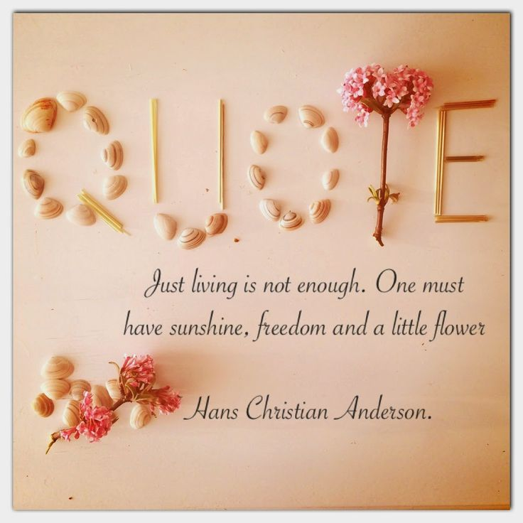 HappyStepz: Photochallenge day 1 Join us today with the #happystepzchallenge #quotes #photo #challenge