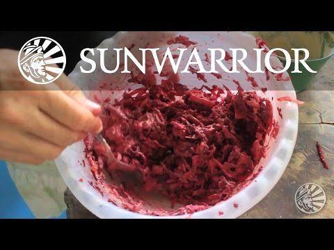 184 best recipe videos images on pinterest recipe videos food raw vegan recipe ensalada rosa danielle ciminero forumfinder Images