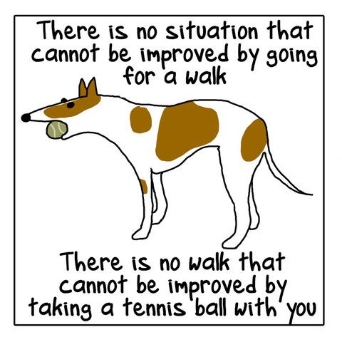 Things my dog says - Single Frame Print