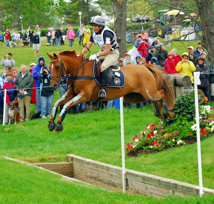 """Theodore O'Connor (1995–2008), nicknamed """"Teddy,"""" was a 14.1¾ hand pony (though of horse phenotype) who competed internationally at the highest level of eventing. Ridden by Olympian Karen O'Connor, he performed exceedingly well at such events as the Rolex Kentucky Three Day and the Pan American Games. His success and small stature earned him the nickname """"Super Pony."""""""