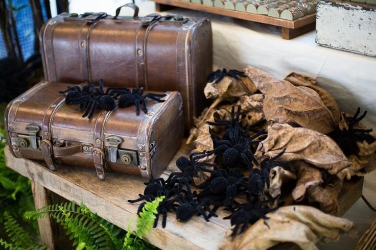 Aranhas e a mala do Indiana. (foto: Nina Amaral)