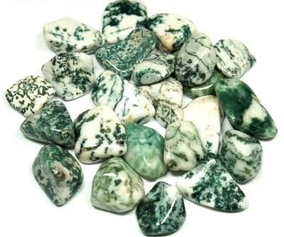Tree Agate Connects to Nature - Daily Crystal Nugget - Information About Crystals As A Healing Tool