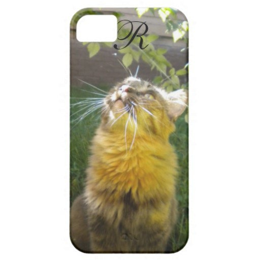 ... iPhone, iPad and iPod Touch cases : Pinterest : 5s cases, Monograms