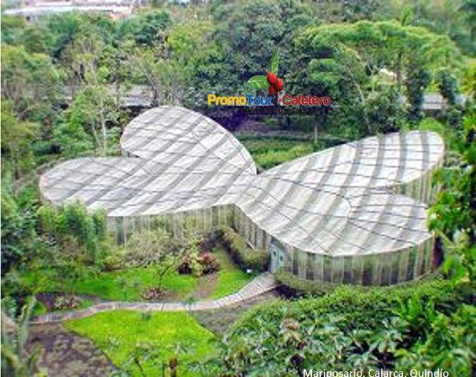 Mariposario, jardin Botanico. miles de especies de mariposas por descubrir.
