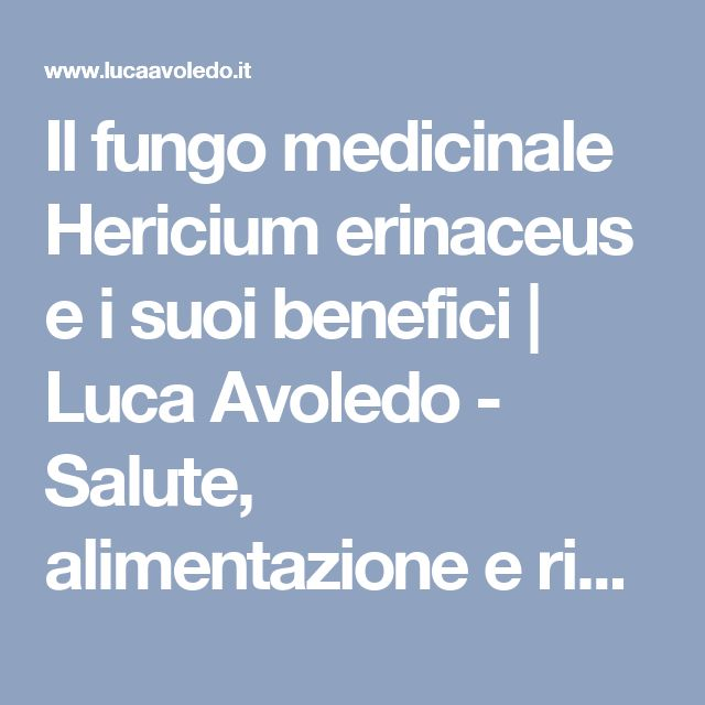 Il fungo medicinale Hericium erinaceus e i suoi benefici | Luca Avoledo - Salute, alimentazione e rimedi naturali