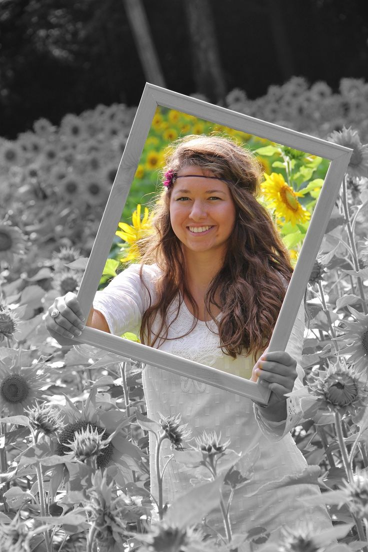 Senior pic in sunflowers with picture frame by misty