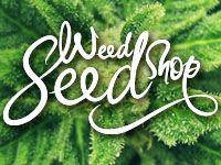 Good selection of trustworthy sources in the UK here. http://www.dope-smoker.co.uk/cannabis-seeds/