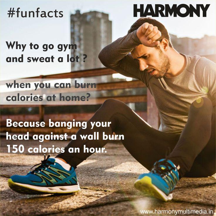 #FunFacts #HarmonyAdvertising