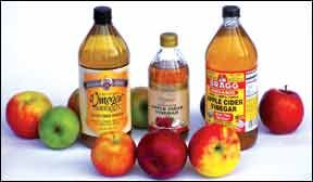 The Benefits of Apple Cider Vinegar to Dogs - Whole Dog Journal Article.  I've been using ACV to treat Buddy's ear mites and soothe his eczema spots. Great results. His ear mites are gone and he's not scratching as much. He also drinks 1/2 teaspoon of ACV in water every day, which has significantly improved his doggie breath. :)