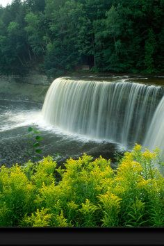 Tahquamenon Falls State Park  one of the largest waterfalls east of the Mississippi