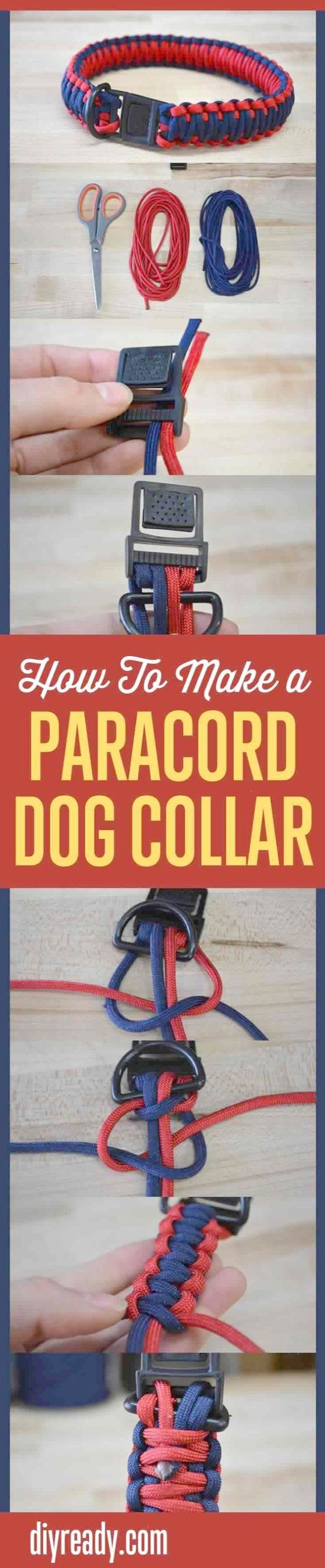best dog images on pinterest dog accessories pets and dog leash