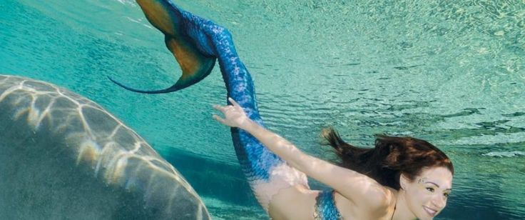 Mermaids and Manatees!!