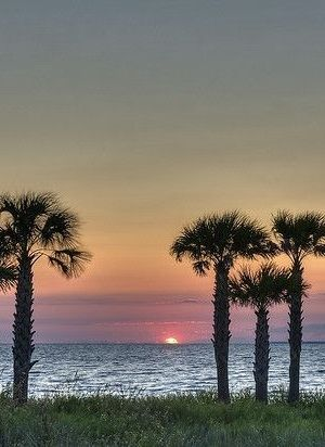 Sunset, Apalachicola Bay, Florida. The Nature Conservancy and others are working together to preserve this area, fighting against agricultural and other interests to preserve the Bay and Apalachicola River's pristine nature.