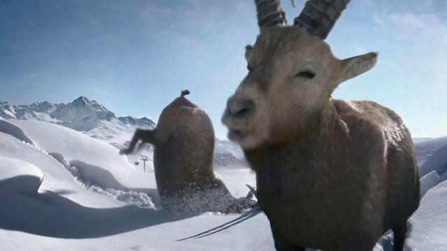 "Graubünden Tourismus Meteo ""Lueg"" #elefantstudios"
