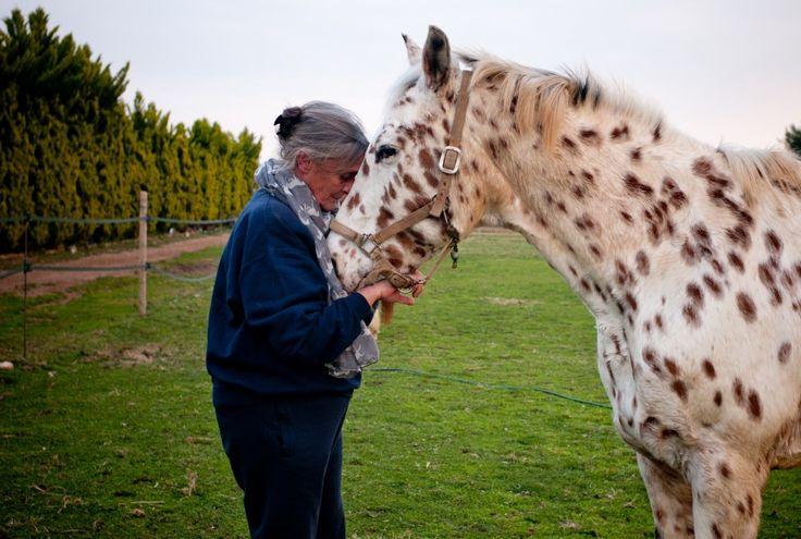 Η νευρολόγος - ψυχίατρος και ιδρύτρια της Ιππόλυσης, Νίκη Μαρκογιάννη, μιλά στην Φιλίππα Δημητριάδη για την μέθοδο Eagala, τη θεραπεία με άλογα και ιπποειδή που βοηθά τους ανθρώπους να ξεπεράσουν τα ψυχολογικά τους προβλήματα.