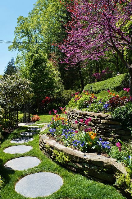 Stone terrace with Cercis and circular stepping stones | flikr via Karl Gercens