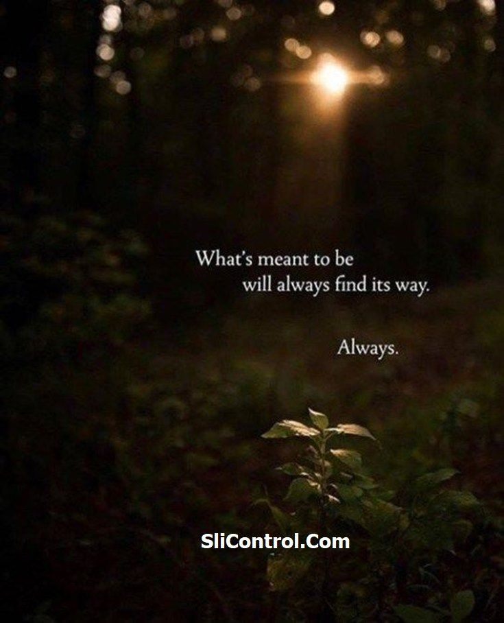 10 Good Night Quotes And Positive Life Sayings 9 Good Night Quotes Night Quotes Positive Life