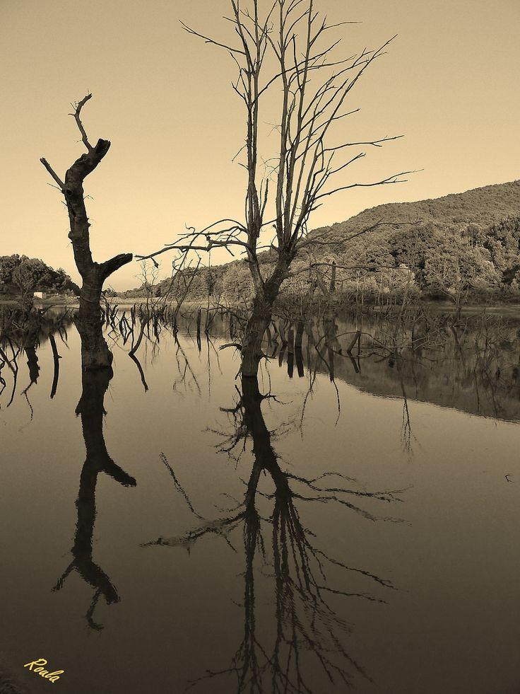 dead lake...