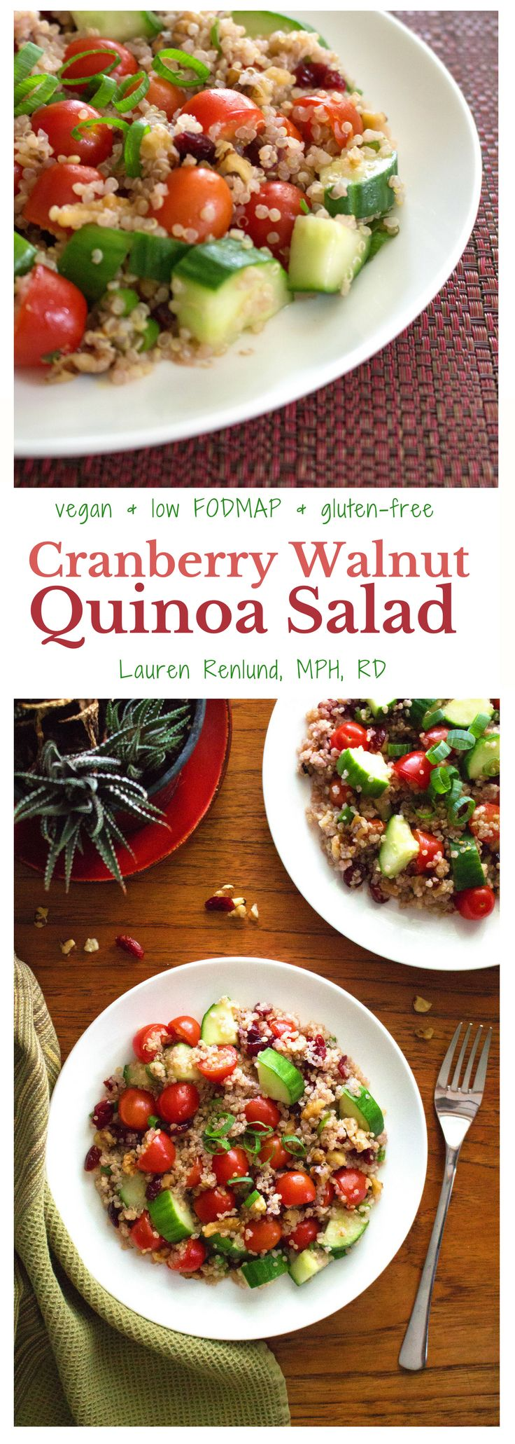 Low FODMAP Cranberry Walnut Quinoa Salad! Super flavourful and delicious. Healthy, Vegan & Gluten-Free