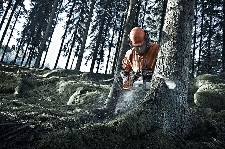 Husqvarna 550 XP® is developed for tree care professionals and skilled land owners.